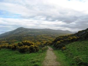 Ireland_139