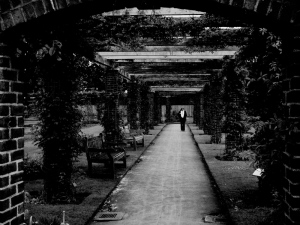 Kew_and_buckingham_251bw