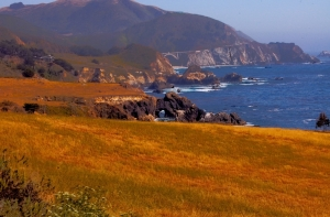 Big_sur_coast_2_tone_compressed_hdr