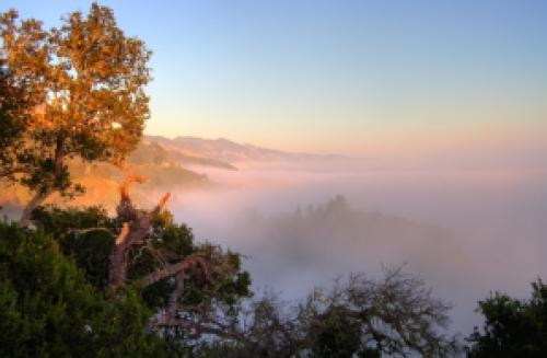 Big_sur_fog_hdr